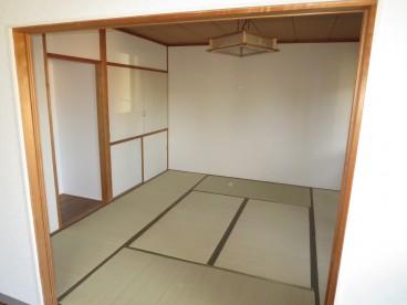 畳の部屋もあります。 団地サイズの畳ではありません。通常サイズ。