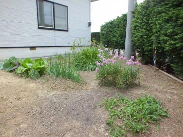 家庭菜園が出来るお庭もあります。アパートでは出来ない夢の家庭菜園ですね!