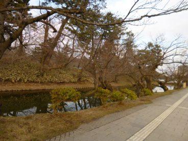 弘前公園への散歩も魅力的ですね。