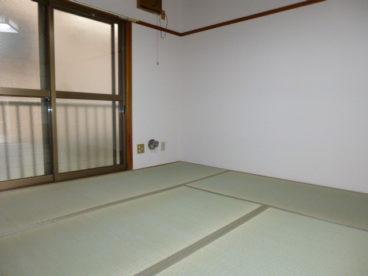 綺麗な畳のお部屋です。