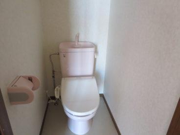 トイレも部屋ごとにカラーバリエーションが違うんです