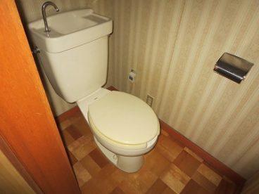トイレも洋式なので、若者から高齢者まで楽に座れます!