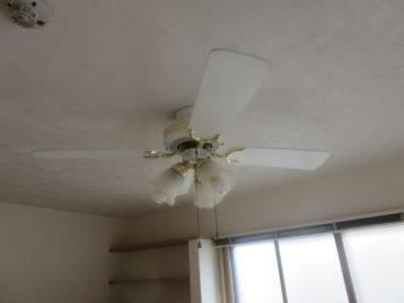 どう?この照明。いちどこんなアパートに住んでみない?
