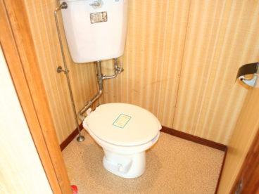 洋式トイレなので腰に負担がないですね